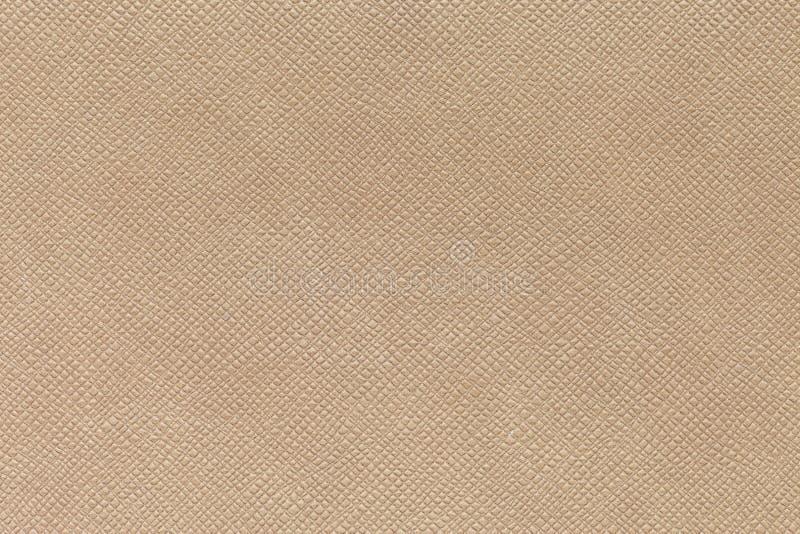Tekstura brown lether lubi słoń skórę obraz stock