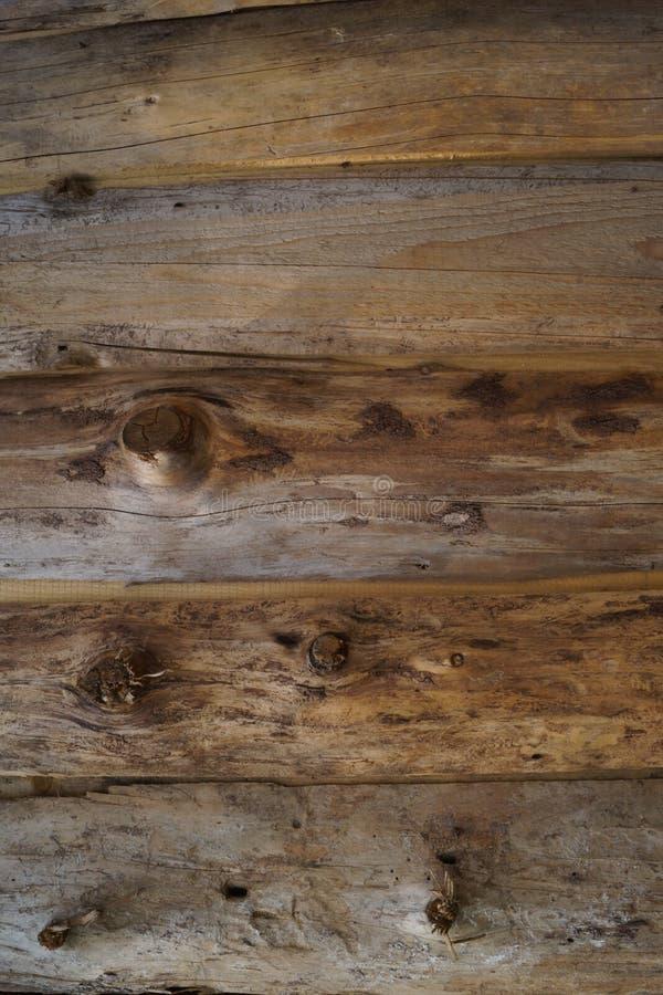 Tekstura drevesiny foto de stock