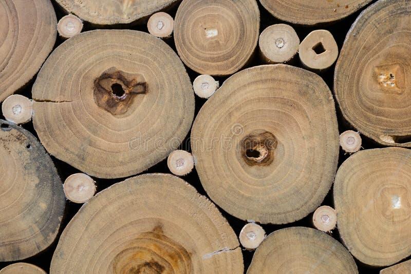 Tekstura drzewny fiszorek fotografia stock