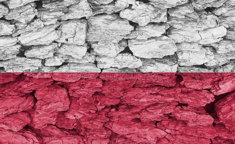 Tekstura flaga Polska obrazy stock