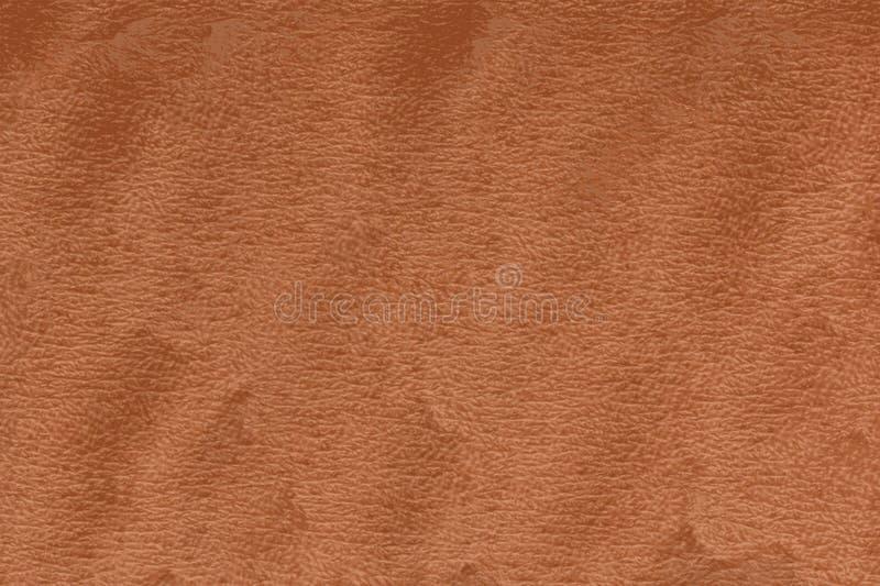Tekstura ludzka skóra z pores i wrinckles zdjęcie stock