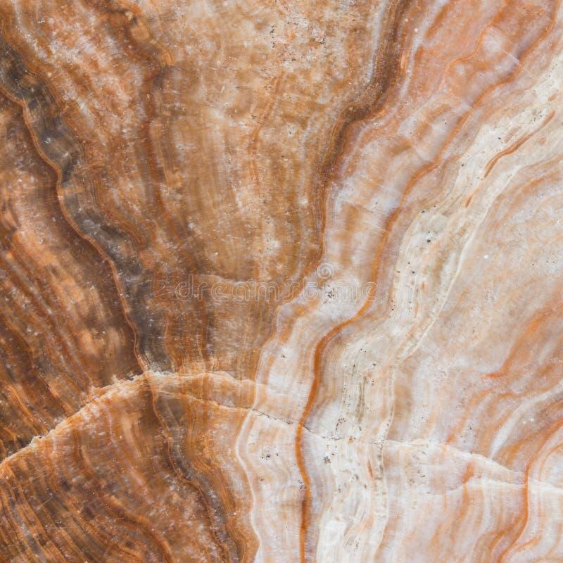 Tekstura marmurowa podłoga zdjęcia royalty free