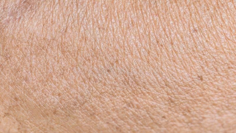 Tekstura marszcząca stara ludzka skóra fotografia royalty free