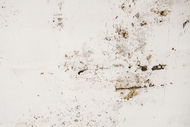 Tekstura na ściennym bielu betonie zdjęcie stock