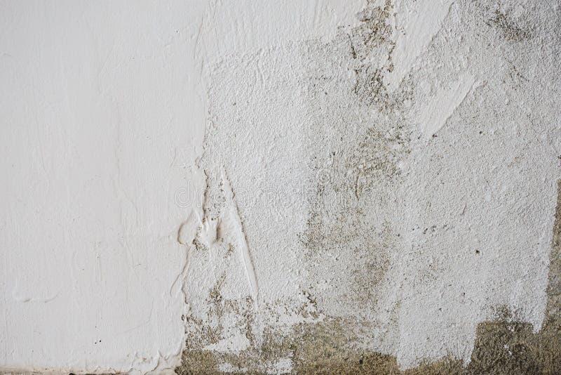 Tekstura na ściennym bielu betonie obraz royalty free