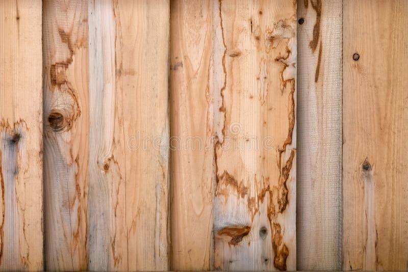 Tekstura naturalny drzewo z niezwykłą strukturą obraz royalty free