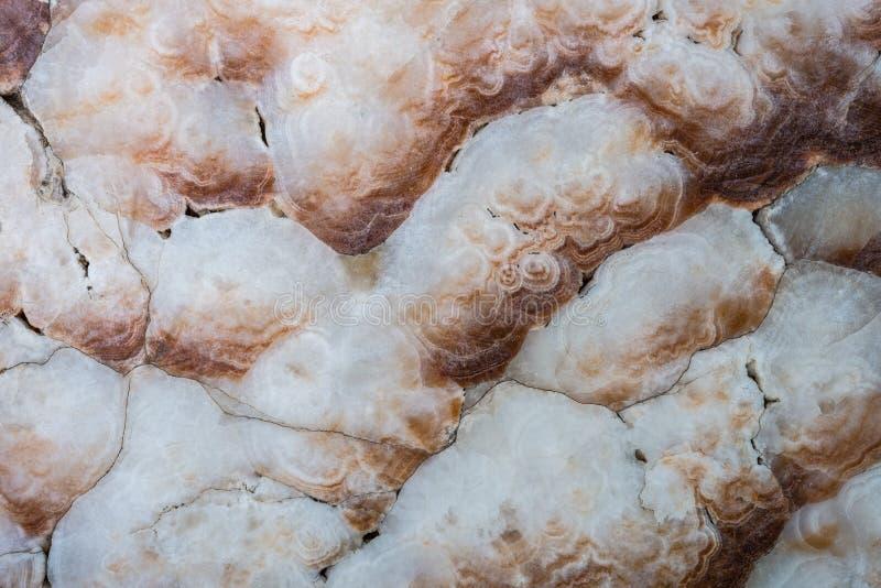 Tekstura naturalny marmuru kamień obraz royalty free
