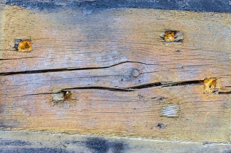 Tekstura nieociosany drewniany purpurowy błękitny kolor zdjęcia royalty free