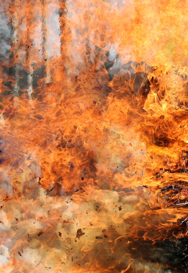 Tekstura płomień od pożaru lasu Pożaru płonący drzewo obraz stock