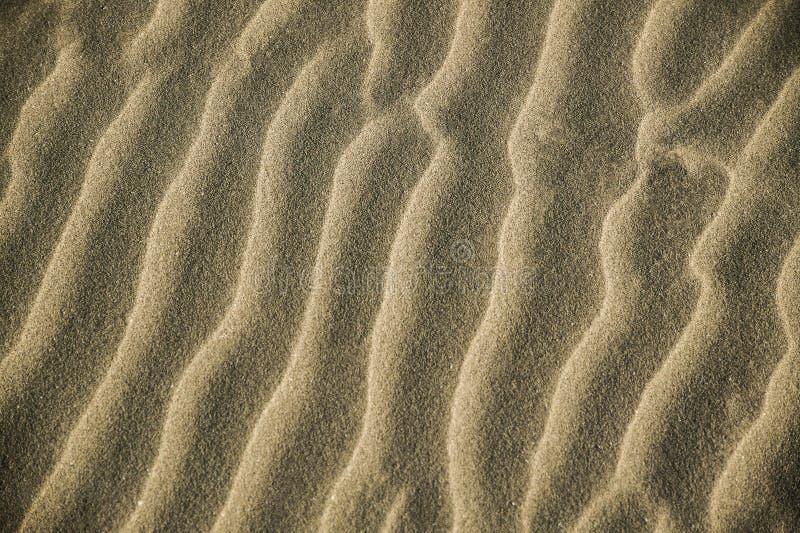 Tekstura piasek zdjęcie stock