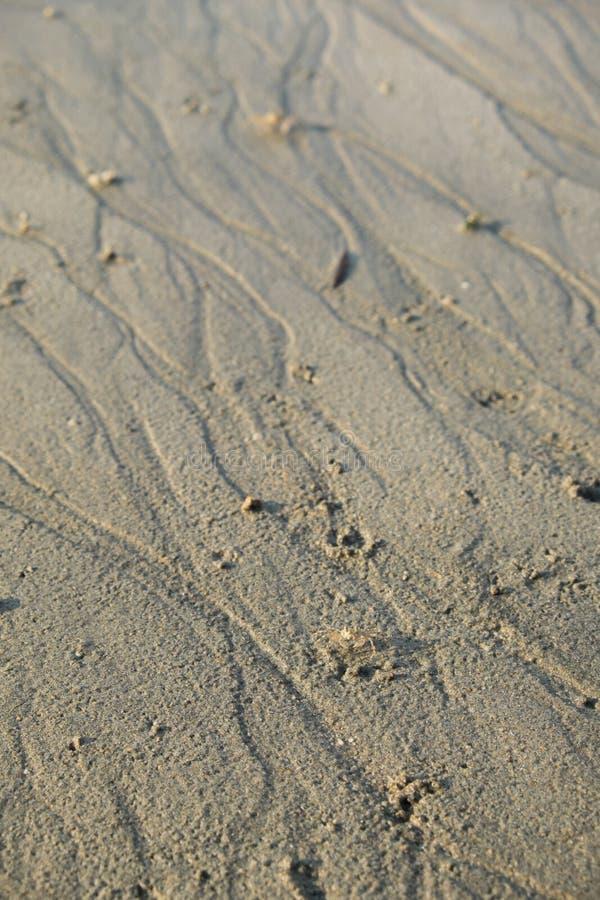 Tekstura piasek plaża obrazy stock