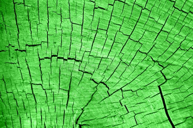 Tekstura popielaty cuted drewno obraz stock