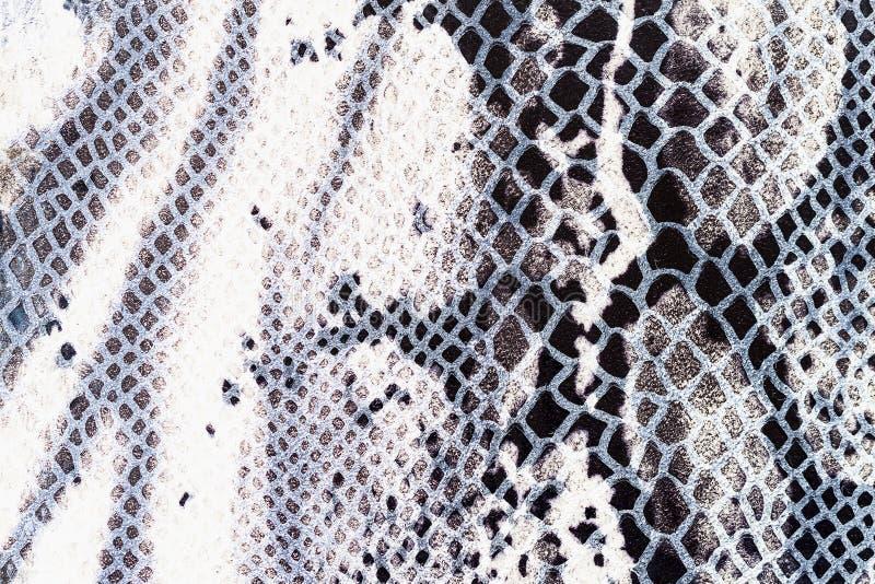 Tekstura prawdziwej skóry zakończenie, embossed pod skórą gada, kontrastuje jaskrawego wzór Dla tła zdjęcia stock