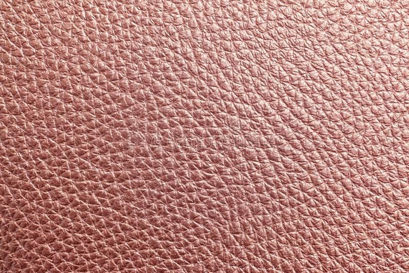 Tekstura różana złocista skóra zdjęcia royalty free