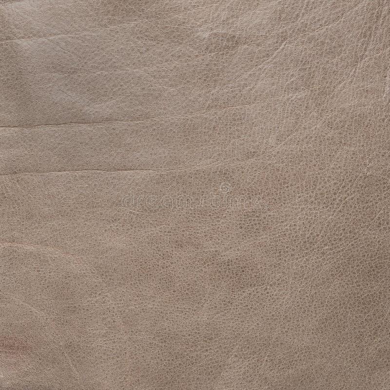 Tekstura skóra w brązu kolorze fotografia royalty free