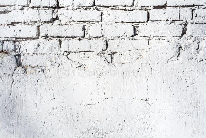 Tekstura stara biała ściana z cegieł z zniszczoną tynk warstwą i cienie od drzew, architektura abstrakta tło obrazy stock