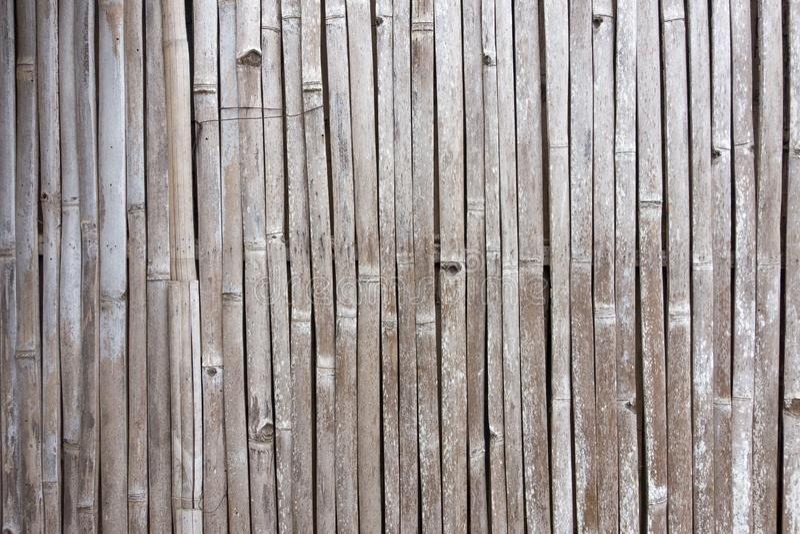 Tekstura stary bambusa ogrodzenie obraz stock