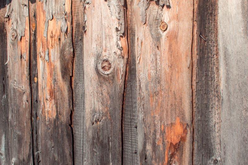 Tekstura stary drewno, zakończenie w górę drewnianych desek obraz stock