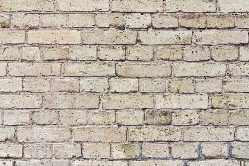 Tekstura beżowy ściana z cegieł zdjęcia royalty free