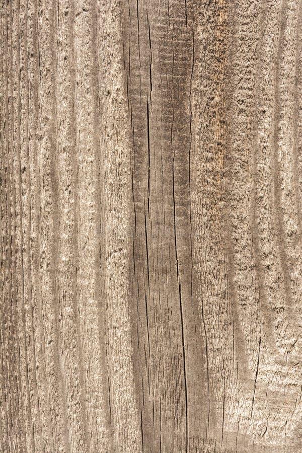 Tekstura stary suchy wietrzejący krakingowy drewno, pęknięcia wzdłuż włókien bele, zakończenie abstrakta tło zdjęcie stock