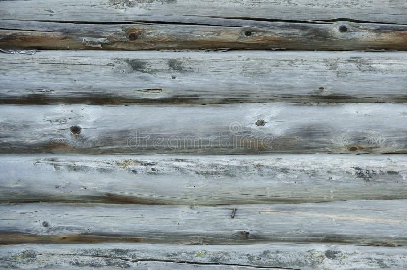 Tekstura starych drewnianych kłód dębowych Pień starego drzewa bez kory z głębokim pęknięciem Zdjęcie naturalnego, starego pnia d obrazy royalty free