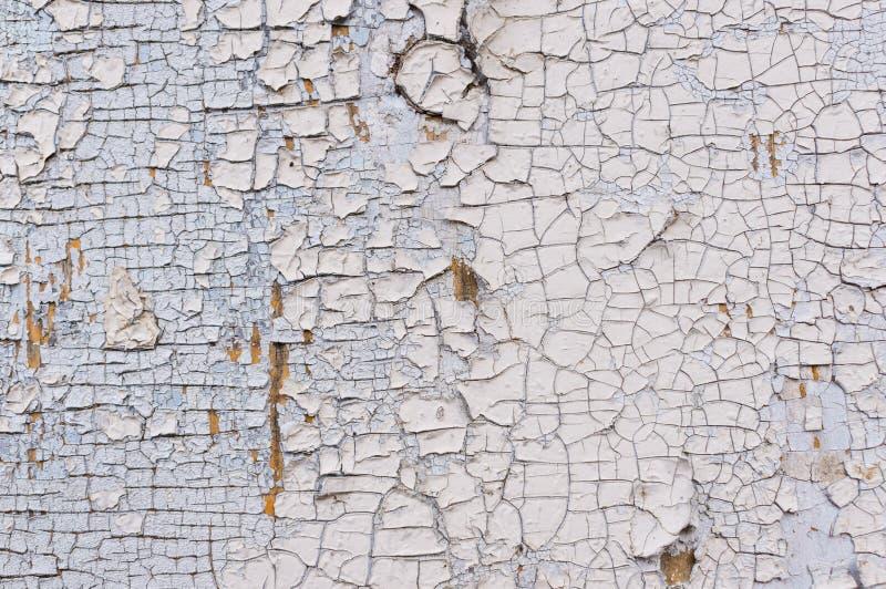 Tekstura strugać białą farbę na drewnianej ścianie Powierzchnia z przetartym materiałem zdjęcia royalty free