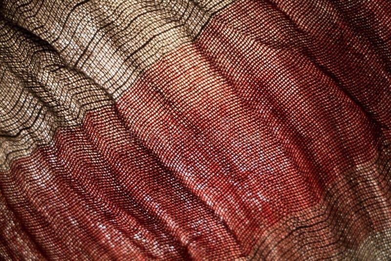 Tekstura szalik zdjęcie stock