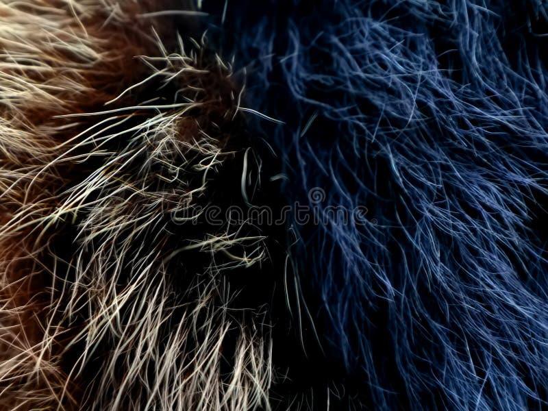 Tekstura szarego wilka włosy futerko jako używać futerkowa backgro tekstura Wełna wilk Wełna pies zdjęcie stock
