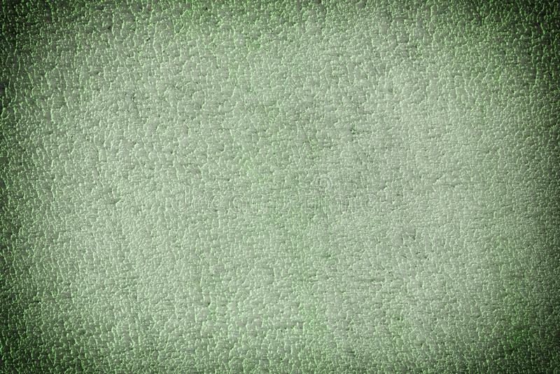 Tekstura szorstka gipsująca ściana, w górę Dekoracyjny zielony kit Pusty tło dla strony internetowej lub układu fotografia stock