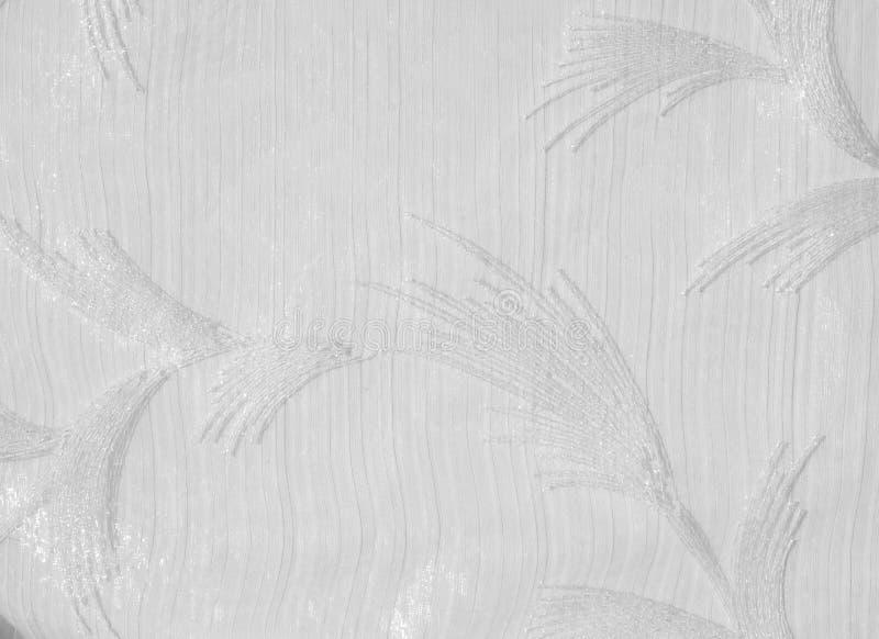 Tekstura, tło, wzór Tiul jest biały Rocznika tiulu chif obraz royalty free