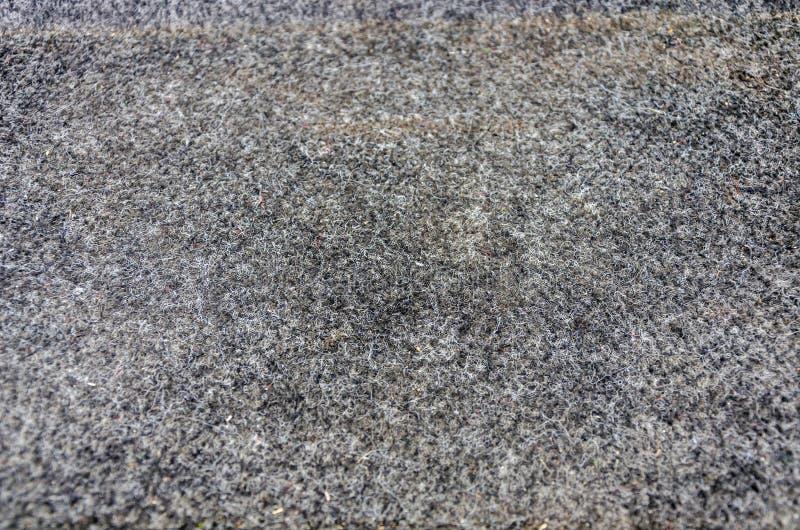 Tekstura wełnisty zmrok - szary dywan zdjęcie stock