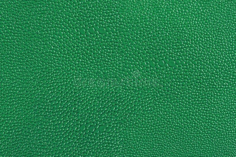 Tekstura zielona skóra obraz stock