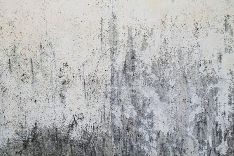 tekstury betonowa szorstka ściana zdjęcie stock