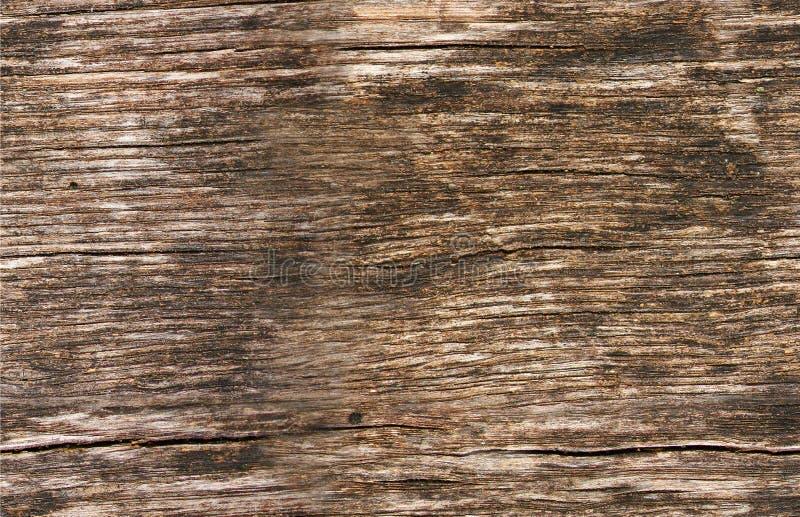 tekstury bezszwowy drewno fotografia stock