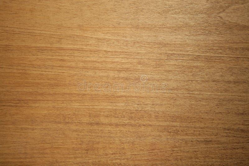 tekstury drewna obraz royalty free