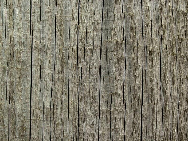 tekstury drewna fotografia stock