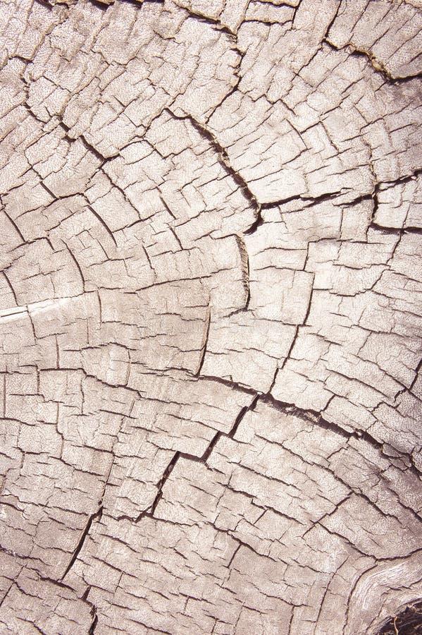 Tekstury nawierzchniowy drewno, stary brudny drewniany tło obraz stock