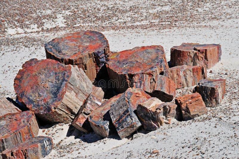 tekstury osłupiały drewno zdjęcie royalty free