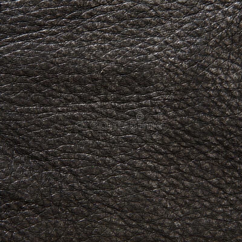 Tekstury rzemienny tło obraz royalty free