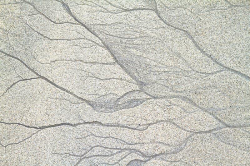Tekstury słodkowodne żyły w piasku fotografia royalty free