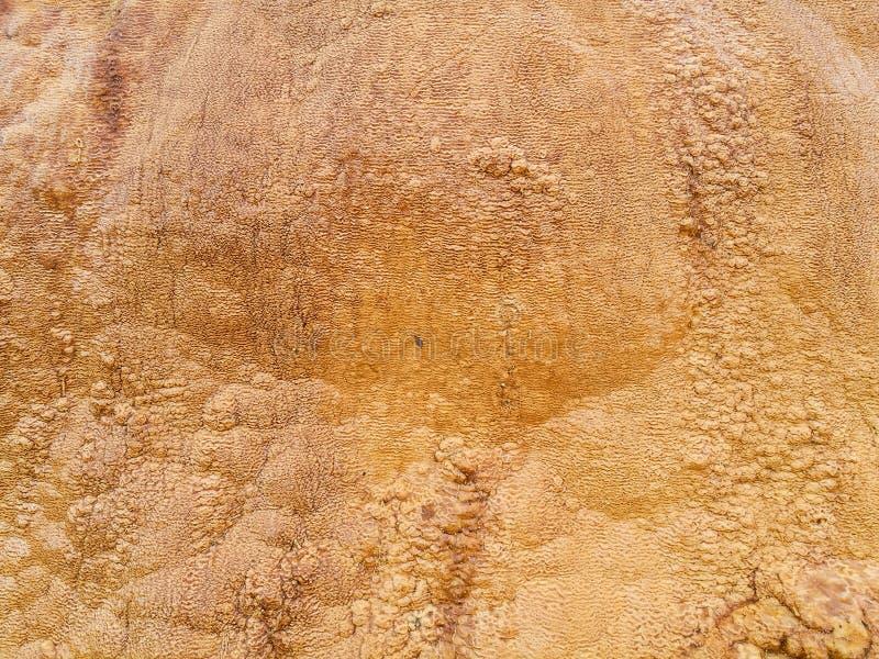 Tekstury siarka deponuje pod strumień acidic wodą obraz stock