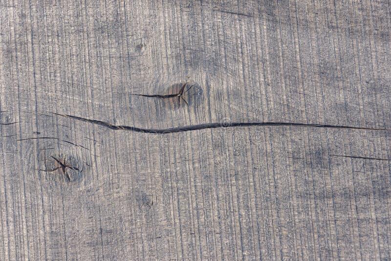 Tekstury szary stary drzewo fotografia royalty free