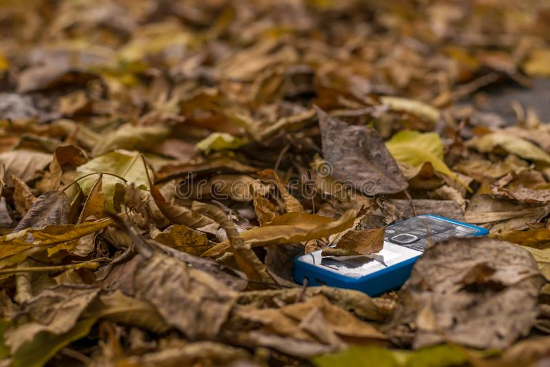 Teléfono celular viejo con los botones que mienten en el follaje del otoño fotografía de archivo