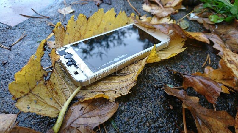 Teléfono con la pantalla quebrada en las hojas de otoño que mienten en la trayectoria concreta foto de archivo libre de regalías