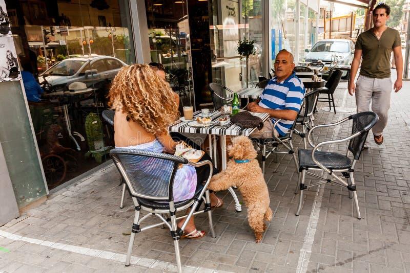 Tel Aviv, Israel - 9 de setembro de 2011: Os povos com seu cão estão relaxando no café na rua situada perto do telefone Baruch da imagem de stock
