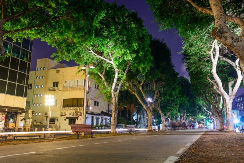 TEL AVIV, ISRAEL - EM ABRIL DE 2017: Opinião da noite do bulevar Rothschild em Tel Aviv, Israel foto de stock royalty free