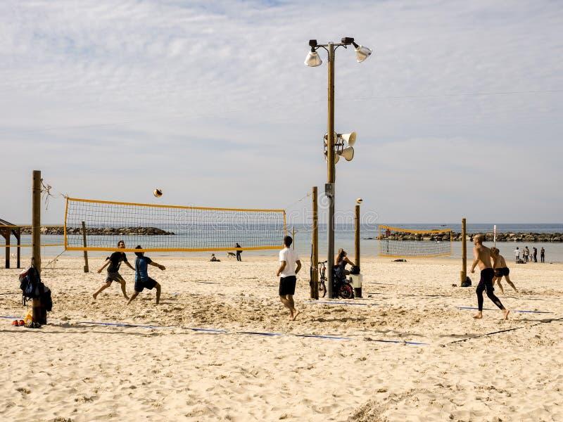 Tel Aviv Israel - Februari 4, 2017: Grupp av ungdomarsom spelar volleyboll på strandtelefonen Baruch royaltyfri fotografi