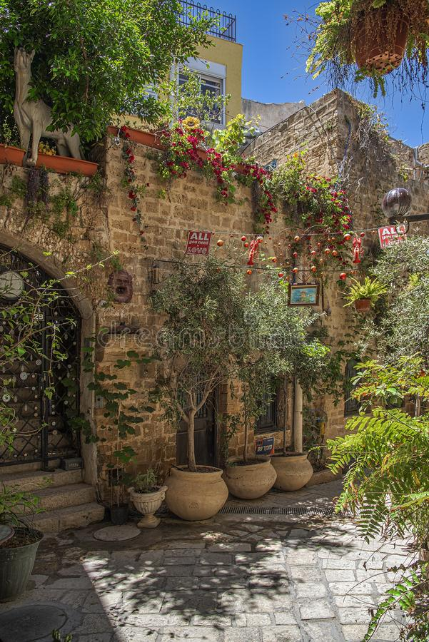 Tel-Aviv Israel May 19, 2019 View of a lovely little garden within the walls of the old city of Jaffa, with its pink flowers, gree royalty free stock photography