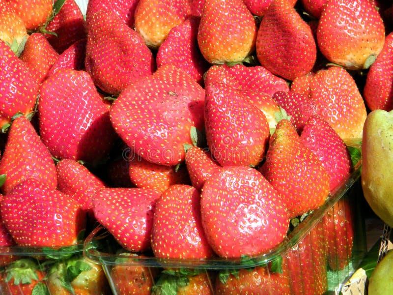 Tel Aviv la fresa 2011 imagen de archivo libre de regalías