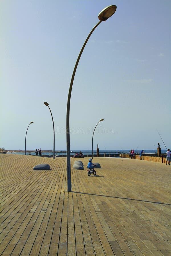Tel Aviv portpromenad, stads- träddesign royaltyfria bilder